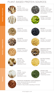 PlantBasedProtein